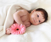 Portrait of a baby lying on the bed. One month old — Stock Photo