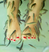 Fish spa pedicure — Stock Photo