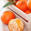 Fresh citrus — Stock Photo #8363420