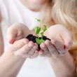 Young woman holding young plant in her hands — Stock Photo #8752536