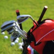 Постер, плакат: Golf clubs in golfbag