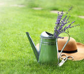 Lavender in watering can, hat and scissors — Stock Photo