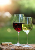 Two glasses of the white and red wine — Stock Photo