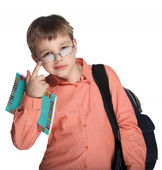 Schoolchild in glasses — Stock Photo