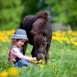 Child and small horse in the field - Stock Photo