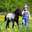 Stock Photo: Child and foal in field