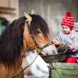 Child feeding a horse - Stock Photo