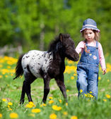 Child and foal in the field — Stockfoto