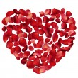 Heart made of rose petals — Stock Vector