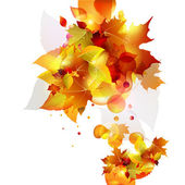 Autumn background. — Vector de stock