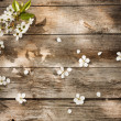Stock Photo: Spring flowers on wooden background