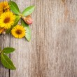 Stock Photo: Yellow flowers on wooden background