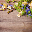 Spring flowers on woode background - Stock Photo