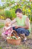 Men and little girl in garden — Stock Photo