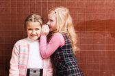 Schoolgirl tells a secret girlfriend — Stock Photo