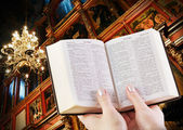 Pray and read the bible — Stock Photo