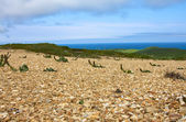Golets 2. View from mountains to Bering sea — Stock Photo