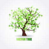 Vector illustration of beautiful spring tree with fresh new leaves — Stock Vector