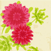 Chrysanthemums on grunge background — Stock Vector
