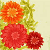 Chrysanthemums on grunge background — Stock Vector