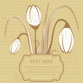 Vintage floral card with spring crocus — Stock Vector