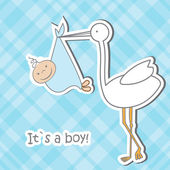 Baby arrival card with stork that brings a cute boy — Stock Vector