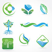 Set of Leaf with roots. Ecological sign — Stock Vector