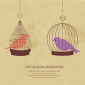Vintage card with two cute birds in retro cages — Vector de stock