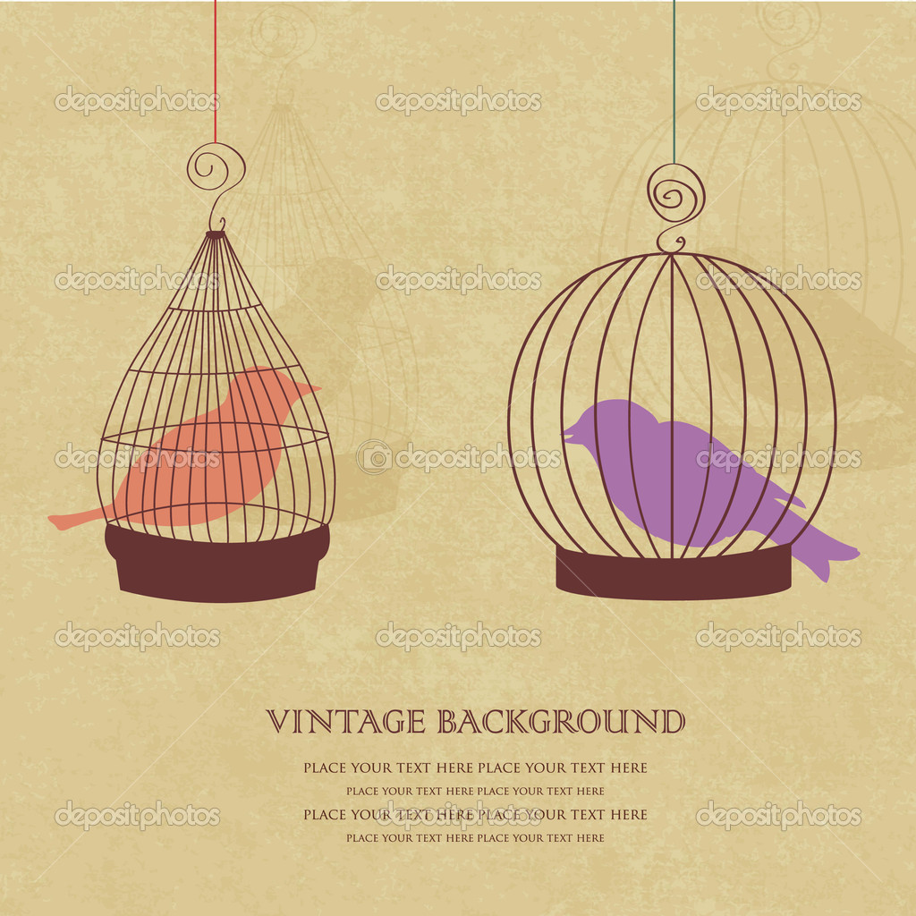 Vintage card with two cute birds in retro cages — Stock Vector #8686625