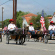 Ojai 4th of July Parade 2010 — Stock Photo #7975969