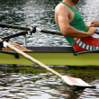 Stock Photo: Rowing athletes in training
