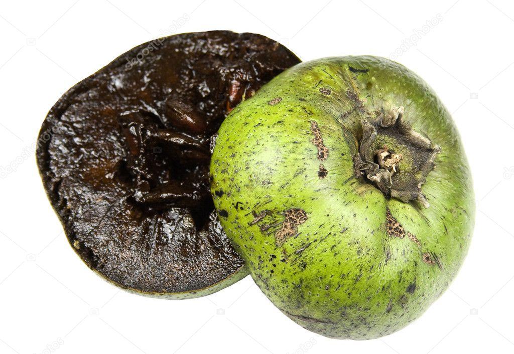 Zapote Fruta Mexicana Frutas Zapotes