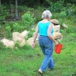 Female gardener. — Stock Photo #10055823