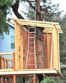 Treehouse. — Foto Stock