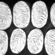 Fingerprints. — Stock Photo