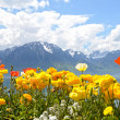Flowers against mountains and lake Geneva from the Embankment in Montreux. Switzerland — Stockfoto