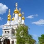 Dome of Russian orthodox church in Geneva — Stock Photo #10573580