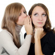 Two girl-friends tell gossips on an ear isolated — Stock Photo