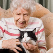 The grandmother with a cat on a sofa — Stock Photo #8257694