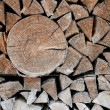 Woodpile of fire wood — Stock Photo