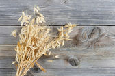 Oats Border over wooden background — Stock Photo