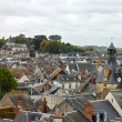Rooftops in Amboise. Beautiful medieval village Amboise, Loire Valley, Fran - Stock Photo