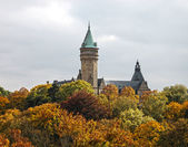 Luxembourg castle and trees in Autumn — Stock Photo