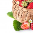 Fresh strawberry - Foto de Stock