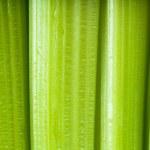 Celery — Stock Photo #10573696