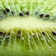 Kiwi fruit — Stock Photo #8350147