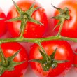 tomatoes — Stock Photo #8571608