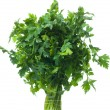 Parsley — Stock Photo #8786822