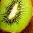 Kiwi fruit — Stock Photo #9206933