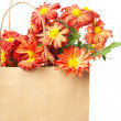 Chrysanthemums in a paper bag — Stok fotoğraf